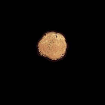 magno-legno-logo